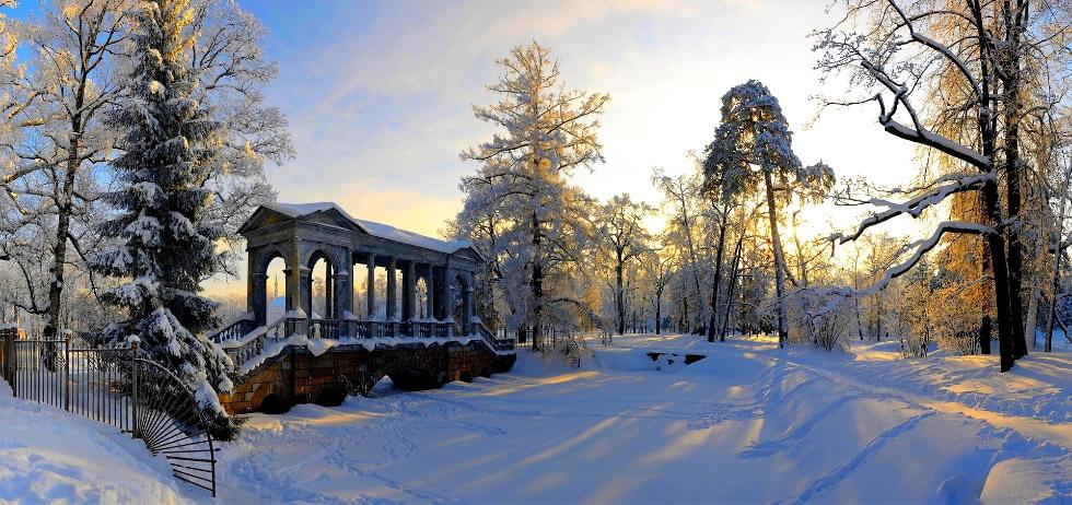 Картинки по запросу екатерининский парк зимой